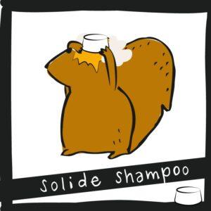 Solide shampoo