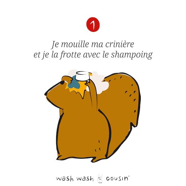 ModeEmploi shampoing WWC-12